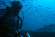 Werner mit Kamera, Unterwasser, Ägypten