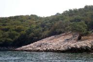 Tauchurlaub Kroatien