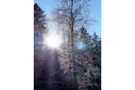 Wintertag 2017 PF LB