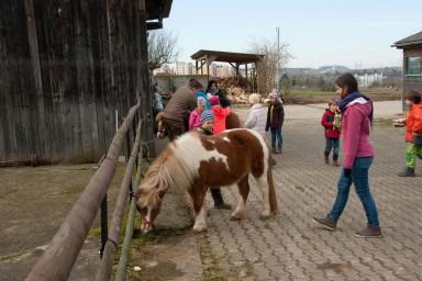 Bauernhof