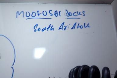 sf 20180810 male Moofushi Rocks 8 (2) hd