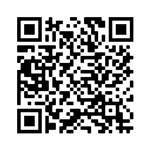 QR Code Adventskalender Pfadfinder RR553