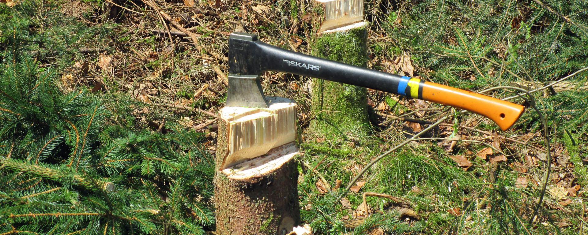 Holzfällen und Waldarbeit